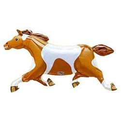 Painted Pony 105 x 59