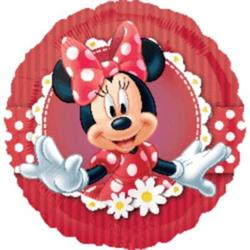 Mad About Minnie 45cm