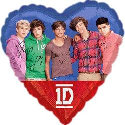 One Direction 45cm