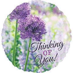 Thinking Of You Allium 45cm