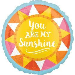 You Are My Sunshine 23cm