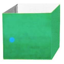 Topiary Box Green 13 x 13cm