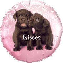 Puppy Kisses 45cm