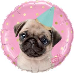 Qualatex Balloons Studio Pets - Party Pug 45cm