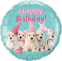 Qualatex Balloons Studio Pets - Birthday Puppies 45cm